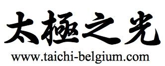 cours tai chi, bruxelles, brussels, brussel, lasne, qi, gong, meditation, taoiste, auderghem, oudergem, waterloo,  louvain-la-neuve, rixensart, taichi enfant, entreprise, gestion du stress, video, burn out