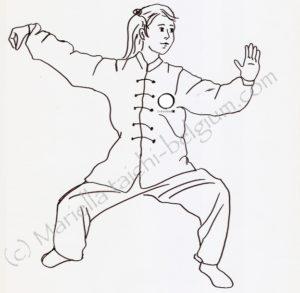 tai chi, bruxelles, brussels, brussel, lasne, qi, gong, meditation, taoiste, auderghem, oudergem, waterloo, rixensart, taichi enfant