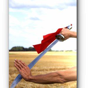 sabre du taichi - taiji saber; cours tai chi (taiji) qi gong, , bruxelles, brussels, brussel, lasne, qi, gong, meditation, taoiste, auderghem, oudergem, waterloo, louvain-la-neuve, rixensart, brabant wallon, belgique, taichi enfant, entreprise, gestion du stress, video, burn out, méditation pleine conscience